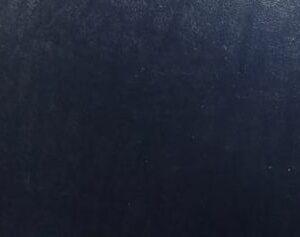 Δερματίνη stock ΜΠΛΕ 10.196
