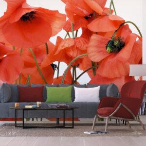 Φωτοταπετσαρίες Poster FTS 0479